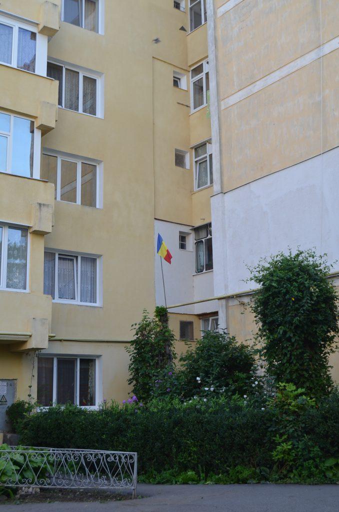 steag arborat in Falticeni(3) 29.07.2014