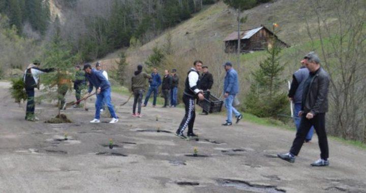 Protest inedit: locuitori din Broșteni au plantat flori și copăceiîn gropile din DJ 177 A