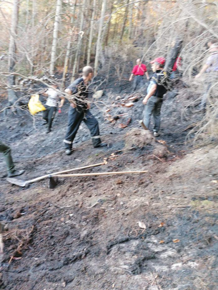 82 de pompieri și lucrători silvici au preîntâmpinat un incendiu de fond forestier la Poiana Micului