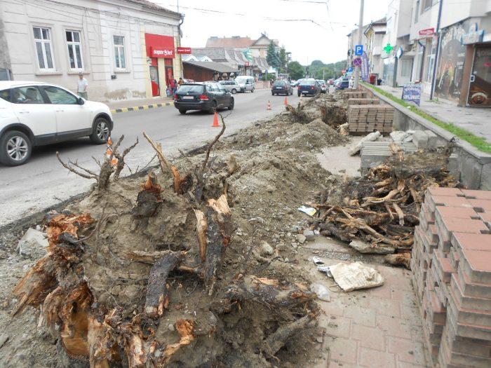 """Lungu continuă """"pe tăcute"""" proiectul sensului unic pe bulevardele din municipiul Suceava.Carosabilul a fost reconfigurat, iar la trecerile de pietoni s-au montat semafoare"""