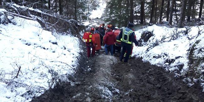 Bărbat rănit după ce un copac a căzut peste el, la Ciocănești