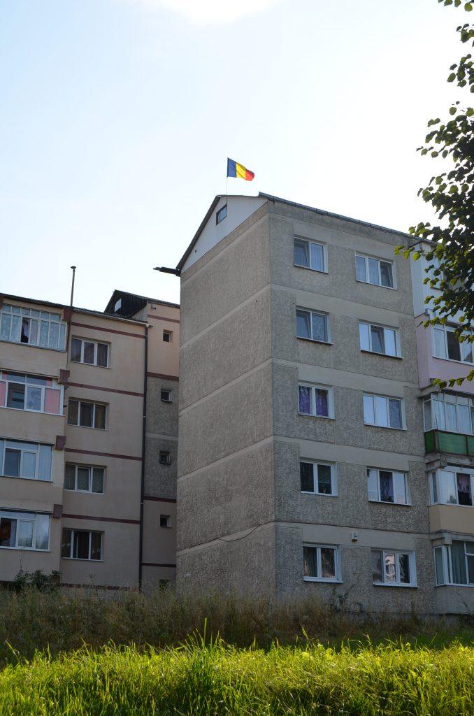 steag arborat in Falticeni(4) 29.07.2014
