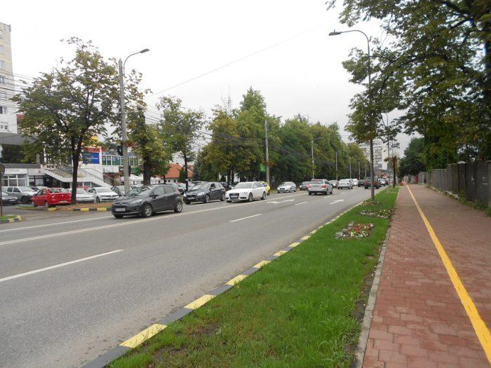 Struțo-cămila sistematizării rutiere din municipiul Suceava: sensul unic pe bulevarde a fost aprobat, dar amânat pentru anii viitori