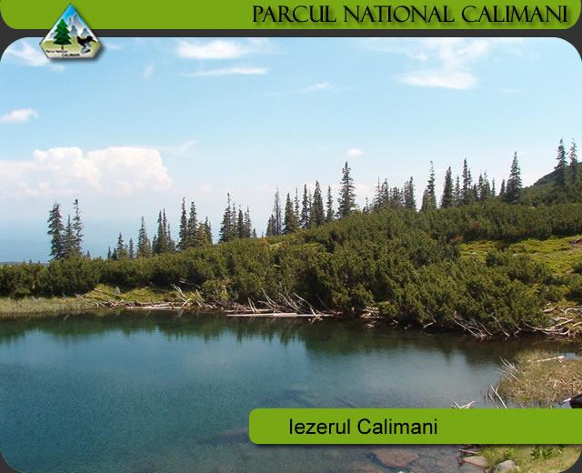 Neacordarea compensațiilor, restricționarea vânătorii și turismul motorizat distrug Parcul Național Călimani