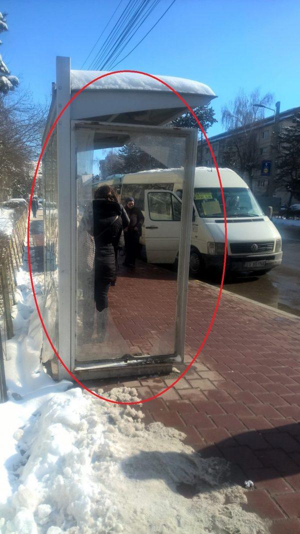 """Cușnir îl critică""""la grămadă""""pe Lungu pentru stațiile de transport distruse și pentru câinii comunitari"""