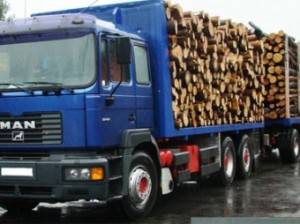 Camion-lemne 3