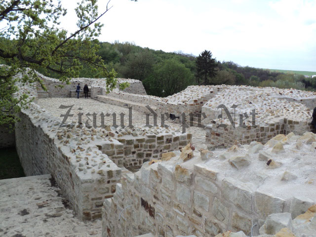 Cetatea de Scaun a Sucevei 03.05 (4)