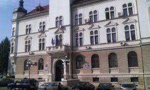 Consiliul Judetean Suceava si Prefectura 2013