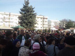 Festivalul Marului Falticeni 26.10.2013  (14)