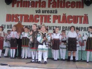 Festivalul Marului Falticeni 26.10.2013  (33)