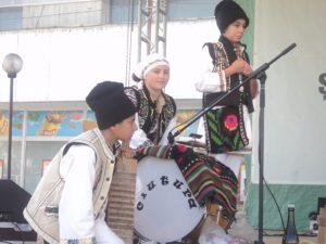 Festivalul Marului Falticeni 26.10.2013  (4)
