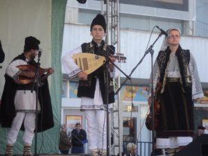 Festivalul Marului Falticeni 26.10.2013  (5)