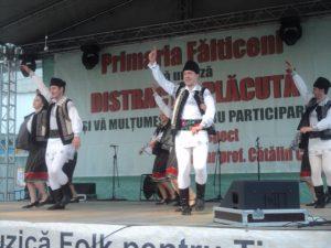 Festivalul Marului Falticeni 26.10.2013  (71)