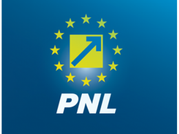 PNL sigla