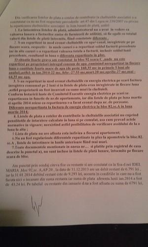 Raport dna Bulaicon si Rodica Gontariu (5)