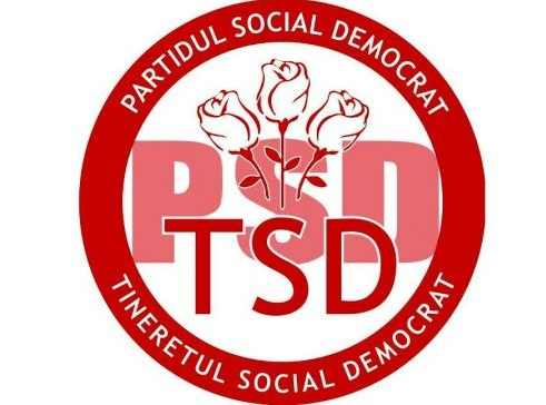 Tinerii PSD se pregătesc politic la Fălticeni