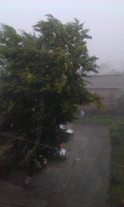 ploaie vant