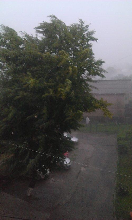 Pagube produse de ploi în 7 localități din județul Suceava