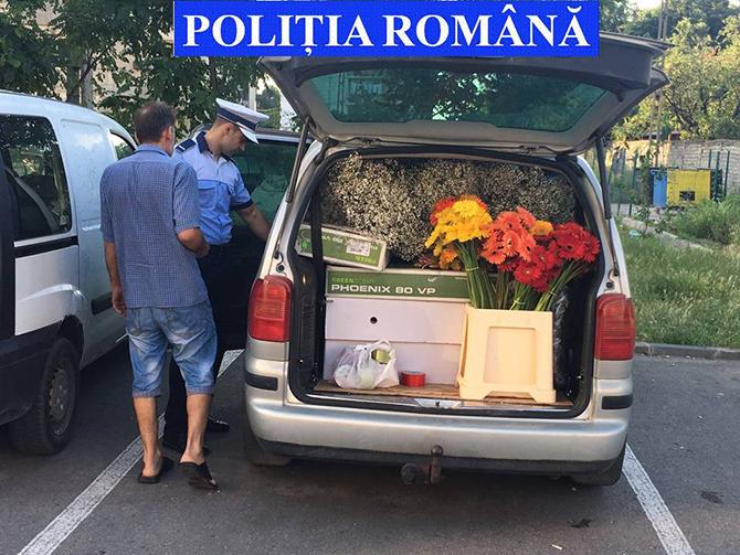 actiune economic politie iulie 2016