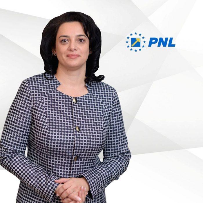 """Fădor acuză PSD căpune beţe în roate guvernării PNL: """"Ținta PSD este de a deturna atenţia românilor"""""""
