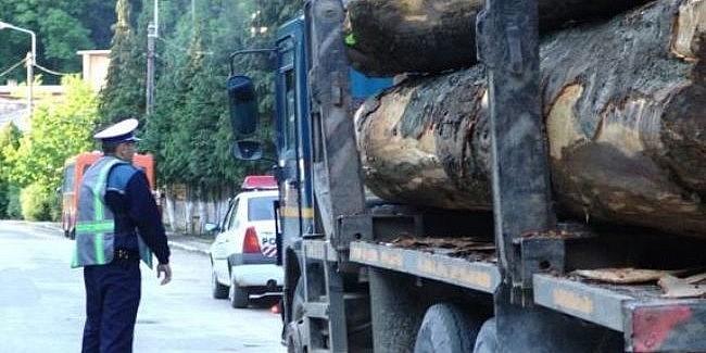 Nereguli cu material lemnos depistate la Boroaia și Râșca