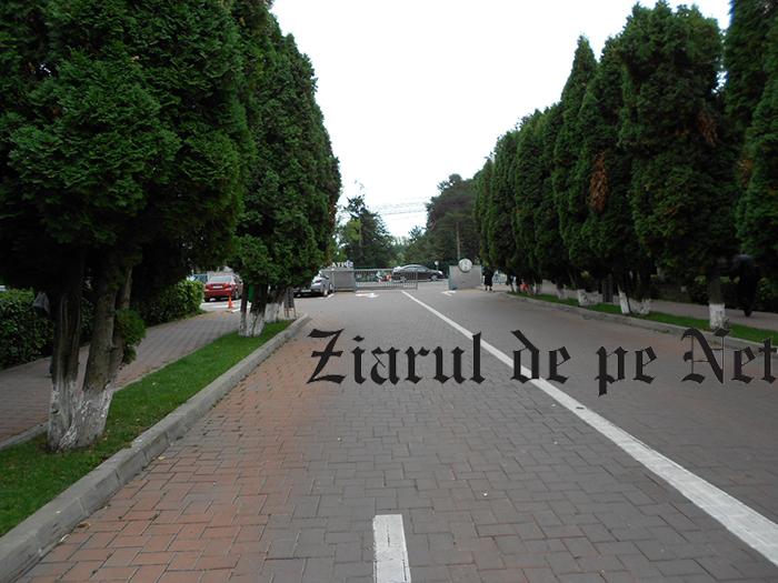 Altă glumă marca Flutur: telegondolă la Spitalul Județean Suceava