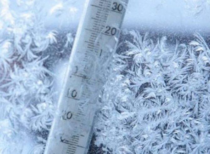Cea mai rece noapte din această iarnă: -21 grade Celsius la Poiana Stampei