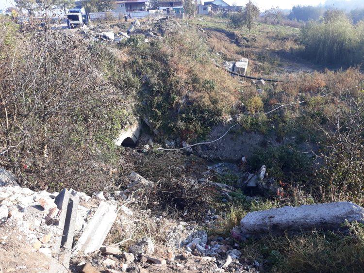 Primăria Fălticeni plantează 8.800 de puieți de salcâm pentru a stopa alunecările de teren din zona poligon – pârâul Târgului