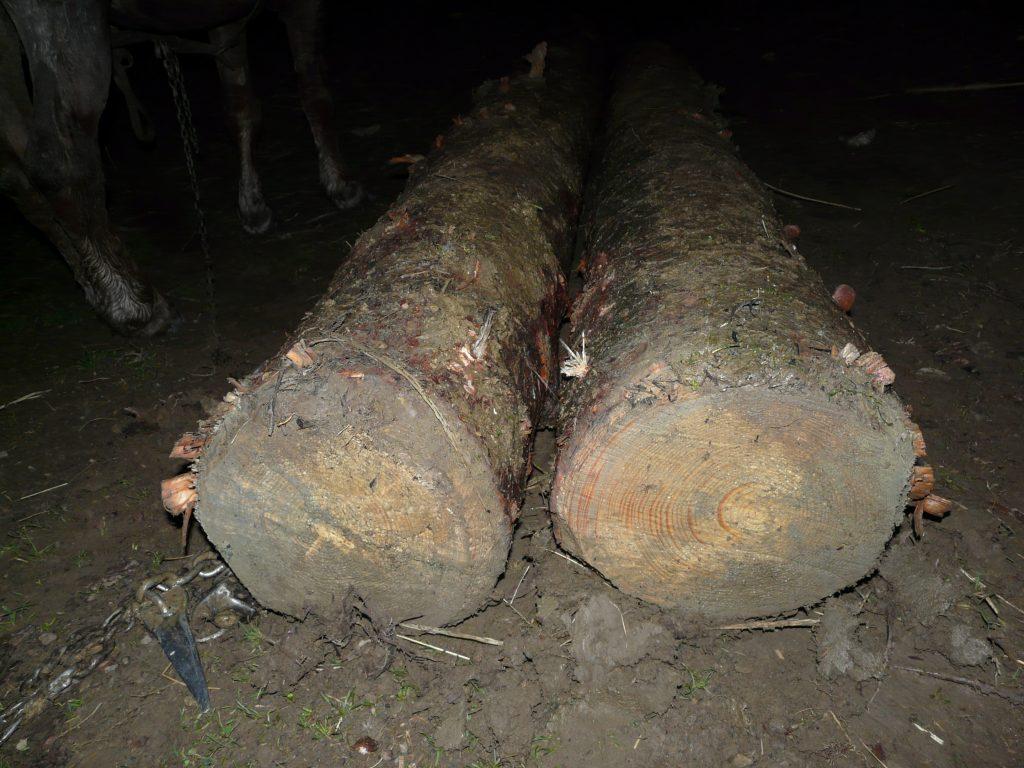 hoti de lemne din Slatina (2)