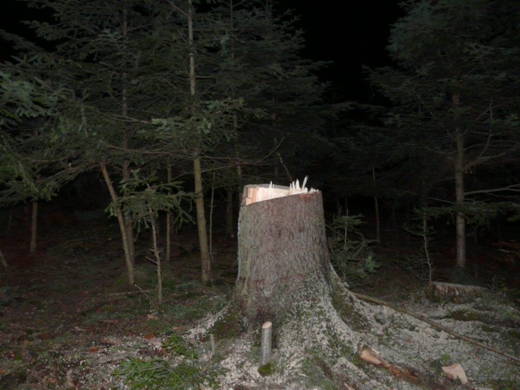 hoti de lemne din Slatina (6)