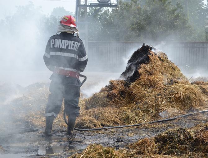 Adăpost de animale mistuit de flăcări, la Dolhești
