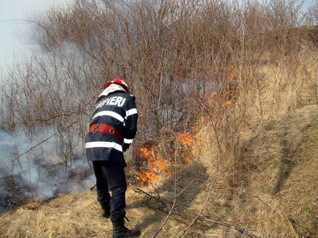 incendiu-vegetatie radio