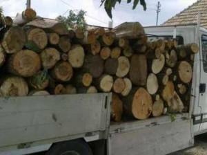lemn autoutilitara