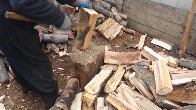 Tânăr din Câmpulung Moldovenesc sancționat de polițiști pentru 2 metri cubi de lemn de foc