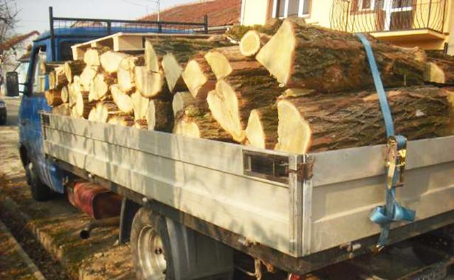 Șofer căutat pentru că a rupt fire electrice cu autoutilitara, sancționat și pentru transport ilegal de material lemnos