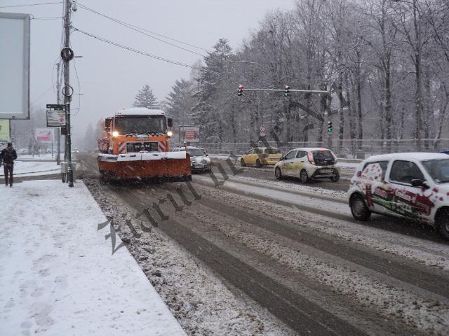 ninsoare Suceava 08.01.16