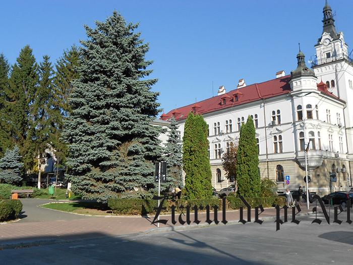 Monumentul Unirii de la Suceava nu are finanțare, dar are poziție, lângă Palatul Administrativ