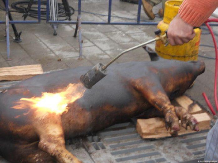 Controale la comercianții de carne. Amenzi de 100.000 de lei date într-o singură zi