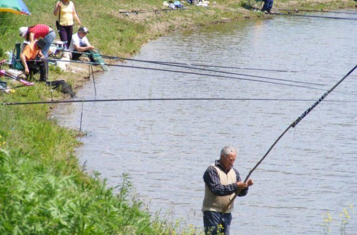 """Partidului Verde Suceavaîngrijorat de soarta pescarilor: """"Taxele sunt un lux pentru românul de rând"""""""