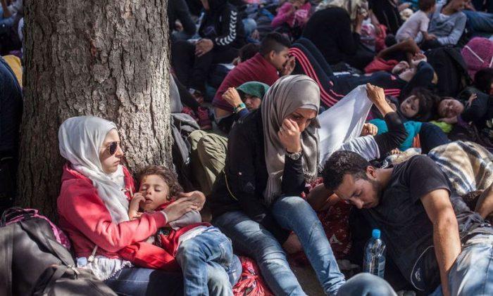 Competiții sportive și drumeții la Rădăuți, de Ziua Mondială a Refugiatului