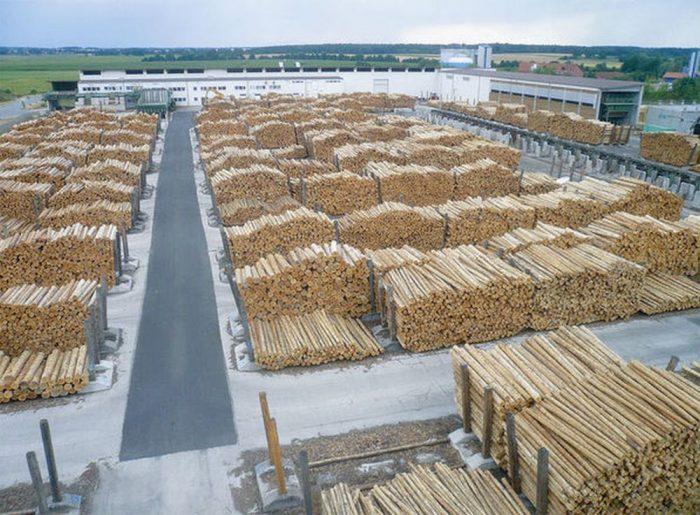 """Interese financiare uriașe.ONG din Statele Unite:""""Schweighofer continuă să achiziţioneze lemn din mai multe parcuri naţionale"""".Compania austriacă:""""Nuacceptăm livrări de acest fel"""""""