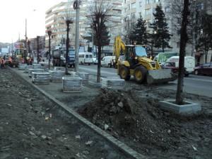 tei pe bulevardul George Enescu 31.03.2015