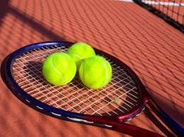 tenis paleta si 3 mingi