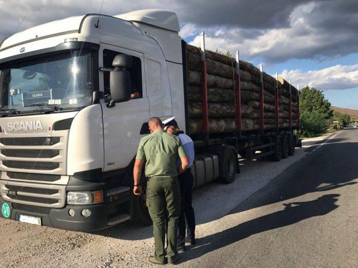 Transporturi ilegale de lemn oprite la Vadu Moldovei și Cornu Luncii. Garda de Mediu încearcă să afle de unde provine materialul